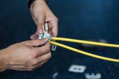 Specialisten förbinder en nätverkskabel med håligheter RJ45, process av att lägga det lokala nätverket Uppsättning Fotografering för Bildbyråer