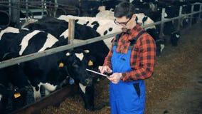 Specialisten kontrollerar tugga kor, medan rymma en minnestavla arkivfilmer