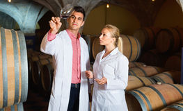 Specialists  checking ageing process of wine Stock Photos