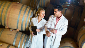 Specialists  checking ageing process of wine Stock Image