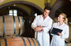 Specialists  checking ageing process of wine Stock Images