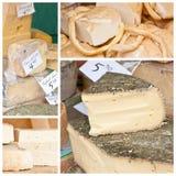 Specialità del formaggio Immagini Stock Libere da Diritti