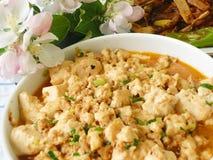 Specialità cinese dell'alimento - tofu Fotografie Stock