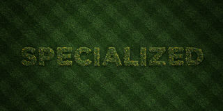 SPECIALIZED - fresh Grass letters with flowers and dandelions - 3D rendered royalty free stock image. Can be used for online banner ads and direct mailers Royalty Free Stock Photography
