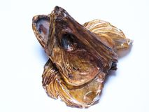 Specially crafted head fish. Dried fish heads isolated on white background Royalty Free Stock Photography