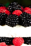 Specialty brie cheese. Specialty cheese with berries close up Stock Photo