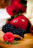 Specialty cheese. And berries close-up Stock Images