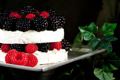 Specialty cheese. Brie cake close-up Royalty Free Stock Image