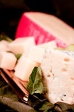 Specialty cheese. Wedges on a tray Royalty Free Stock Photography