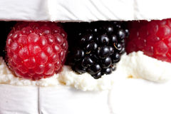 Specialty cheese brie cake. Close up Royalty Free Stock Image
