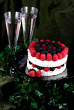 Specialty cheese brie cake. With champagne Royalty Free Stock Images