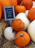 Specialty Pumpkins for Sale Royalty Free Stock Photos