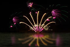 Specical Fireworks Stock Photography