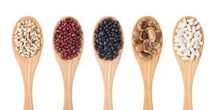 Specie differenti dei fagioli sul cucchiaio di legno Immagine Stock