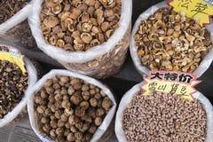 Species Stock Photo
