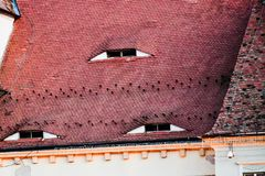 Roofs eyes stock photo