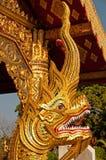 Naga Royaltyfria Bilder