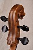 Specificera av en violoncello Fotografering för Bildbyråer