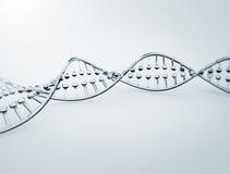 Specificerad modell 3d för DNA högt Arkivfoton