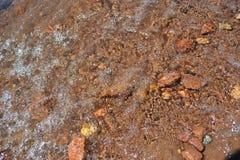 Specificerar diverse stenar i vatten av sjön arkivbilder