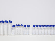Specimen Bottles On Shelf In Laboratory Stock Photos