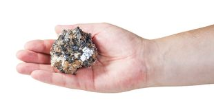 Specimen of zinc and lead mineral ore on male palm Stock Photography