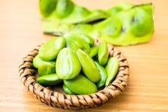 Speciosa frais et mûr de parkia ou haricot amer, haricot de groupe tordu, haricot de puanteur et x28 ; Speciosa de Parkia , FABAC Photo stock