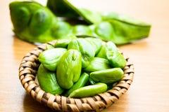 Speciosa frais et mûr de parkia ou haricot amer, haricot de groupe tordu, haricot de puanteur et x28 ; Speciosa de Parkia , FABAC Image stock