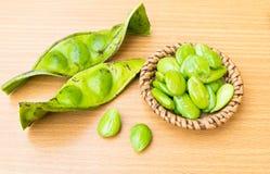 Speciosa frais et mûr de parkia ou haricot amer, haricot de groupe tordu, haricot de puanteur et x28 ; Speciosa de Parkia , FABAC Photos libres de droits