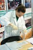 Specjalisty agroecologist robi eksperymentowi Zdjęcie Royalty Free