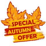 Specjalna jesieni oferta z liści, pomarańczowej i brown rysującą etykietką, Zdjęcia Royalty Free