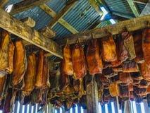 Specjalność Iceland dzwonił hakarl fermentującego rekinu zdjęcie stock