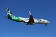 Specjalny koloru plan Transavia 737 Fotografia Stock