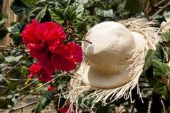 Specjalny pokaz Słomiani kapelusze Obrazy Royalty Free