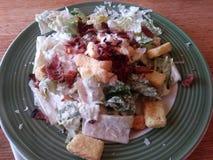 Speck Caesar Salad Lizenzfreie Stockbilder