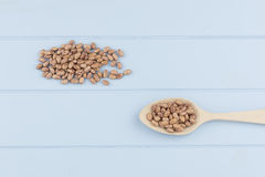 Speckled beans Stock Images