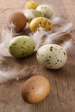 Speckled easter eggs  on wooden table Royalty Free Stock Image