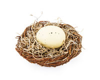 Speckled Egg in a Nest Royalty Free Stock Images