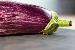 Speckled eggplant Stock Photography