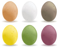 Speckled eggs. A selection of colored speckled eggs Royalty Free Stock Image