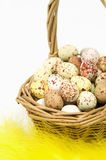 Speckled eggs in basket Royalty Free Stock Photos