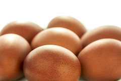 Speckled eggs Stock Photography