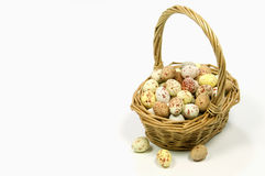 Speckled eggs in wicker basket Royalty Free Stock Images
