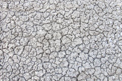 Speckled gray soil Royalty Free Stock Photo