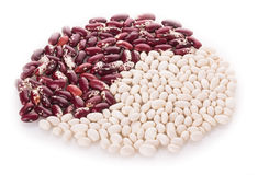 Speckled red and white beans Stock Image