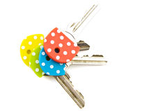 Speckles keys Stock Image