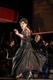 Spectacle featuring Filharmonia Futura and M.  Walewska - Opera Is Life, Royalty Free Stock Photos
