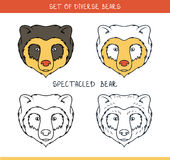 Spectacled bear. Set  face, heads bear in lines Stock Photos