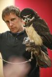 Spectacled Owl Royaltyfria Bilder