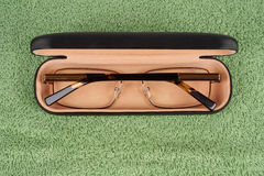 Spectacles in case Royalty Free Stock Photo